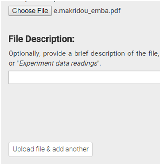 File description
